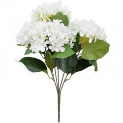 Hortensia kimppu valkoinen