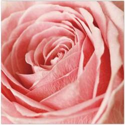 Ruokaservetti ruusu