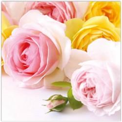 Ruokaservetti ruusut