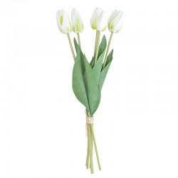 Tulppaanikimppu valkoinen...