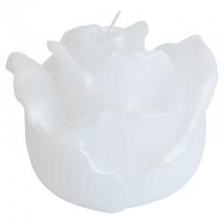 Ruusu kynttilä valkoinen